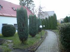 Prostory domova